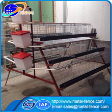 Chicken farm equipment / chicken breeding cage / 3 layers Chicken cage for sale
