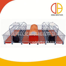 New product piggery pigs farrowing stall with good quality