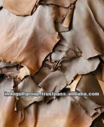 Acid Bate Enzyme Use in Leather Industies