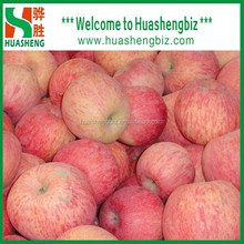 Fresh apple growing paper bag with good quality