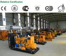 Alibaba china professional biogas generator sd-50