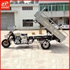 Motorized Adult Tricycle Gas Motor Three Wheeler Electric Start Tricycle With Auto Rear Axle Powerful