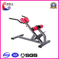 2014 Hot Back Exercise Machine new balance fitness equipment