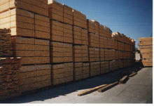 Import Russian Larch Wood direct from Forest.