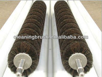 professional fruit and food roller cleaning brush