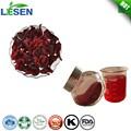 Planta de extracción de Roselle extracto de la flor del hibisco extracto