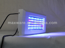 10000k led coral reef aquarium light