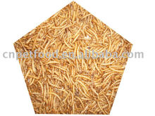 FD/AD/SD mealworm bird/fish/reptile food