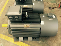 Variable speed electric motors
