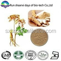 Plant Angelica Sinensis Extract / Angelica (Dong quai ) Root Extract Powder