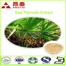 Natural hair loss treatment saw palmetto fruit extract