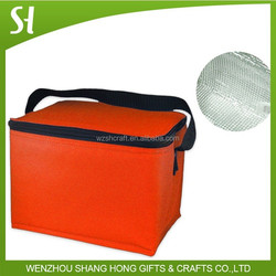 modern type high quality thermostat bag cooler bag