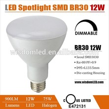 12 watt led lamp made with 12pcs Nichia SMD3030 with 3 years warranty