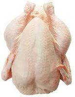 Frozen whole chicken - Brazil