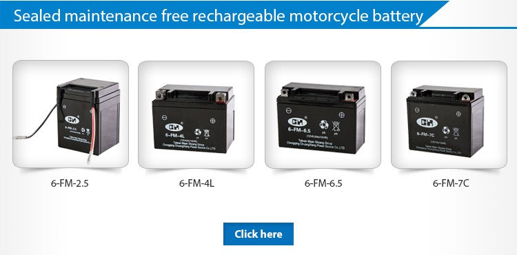 best price exide 12v 28ah maintenance free battery for tricycle.jpg