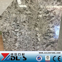 Bianco Antico Granite tile size 600x600 polished price