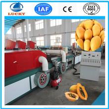 China popular hot temperature treatment mango processing machine