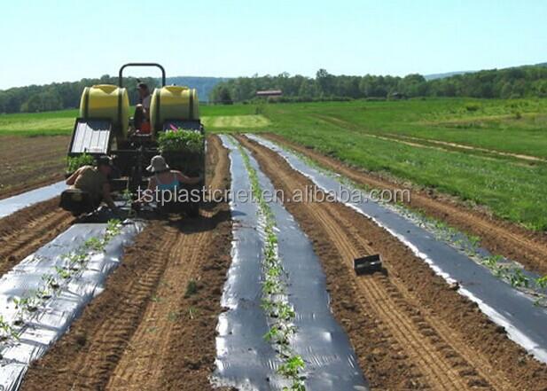 Ldpe noir rouleau de film plastique pour l 39 agriculture for Film plastique noir pour bassin