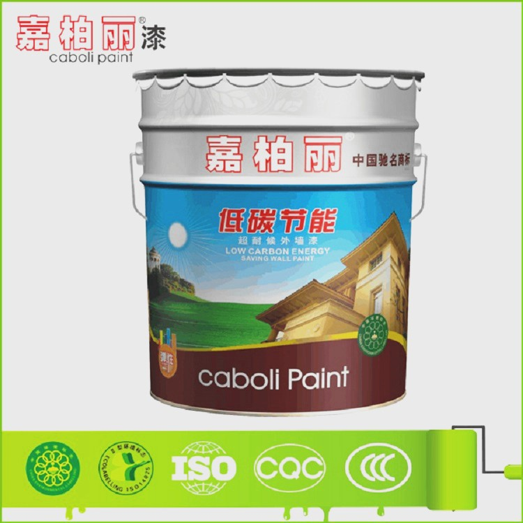 Caboli Coating Paint Exterior Concrete Wall Finishes Buy Exterior Concrete Wall Finishes