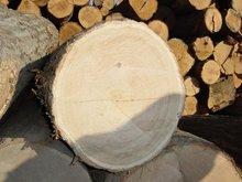 Log and Veneer