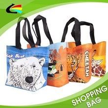 Full Color Printing Eco-Friendly Non-Woven Shopping Bag for Souvenir Shop