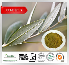 2015 TOP-SELLING product!! 100% Natural Olive extract/Olive Leaf Extract powder