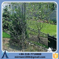 High-quality Security Fence For Garden/Decorative Wrought Iron Fence /Cheap Steel Fence