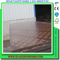 trial order welcome concrete form birch sheet marine plywood for furniture