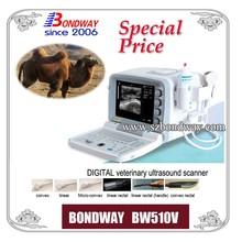Digital Veterinary Ultrasound Scanner(BW510V) animal ultrasound, vet, equine tendon, bovine,swine,goat,sheep, pet imaging