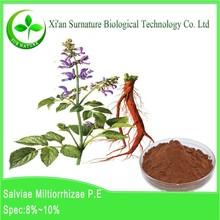 Plant Extract organic Dan shen extract powder wholesale