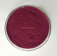 Natural fruit Brazilian Acai Berry Extract powder supplied by ISO Certified Manufactory