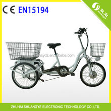 EN15194 36v 20 inch electric tricycle for old man