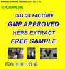 GMP factory provide organic kale powder for sale