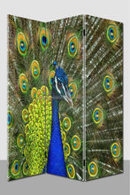Peacock restaurant curtain room dividers,french room dividers