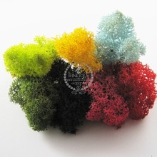 real green,black,yellow,sky blue,yellow-green,red,pink dry preserved dyed green lichen moss for DIY glass dome filling 1503016
