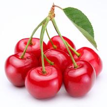 2015Newell new crop canned cherry in glass jar women fresh korea style knitted cherry pattarn sweater