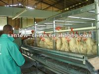 hot-sale automatic large-scale chicken coop with large run