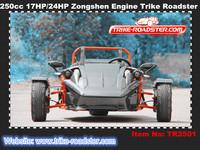 250cc chain drive ZTR trike quad bike EEC roadster