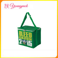 2016 OEM high quality promotional insulated cooler bag for wine