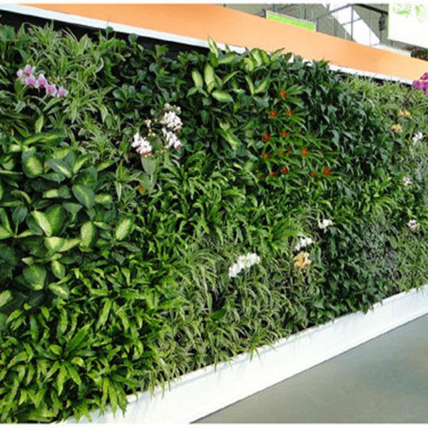Gazon Artificiel D Coration Murale Mousse Artificielle Herbe Mur Pour La D Coration Artificielle