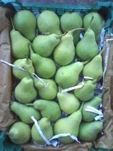 peras frescas