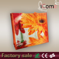 Hot selling_ Factory Cheap Price pp woven wholesale reusable shopping bag(ITEM NO:P150133)