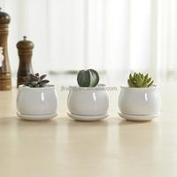 Modern indoor decor small white ceramic flower pot