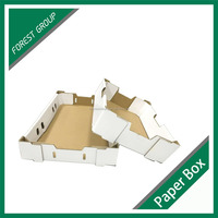 HIGH QUALITY CARDBOARD CARTON FRUIT OR VEGETABLE TRAY MANUFACTURER