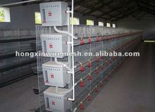 high quality chicken breeding cage (factory)