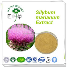 Factory 70% 80% silymarin narural milk thistle extract powder