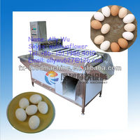 FT-200 cooked chicken hen egg shell removing machine, hen egg shell remover (skype: wulihuaflower; Tel: +86 151 1986 4010)