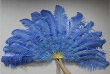 Single Layer Ostrich Feather Fan