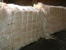 Natural raw sisal fiber / sisal fibre