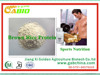 /product-gs/hot-sale-rice-protein-for-protein-shake-and-bars-in-china-60221398201.html
